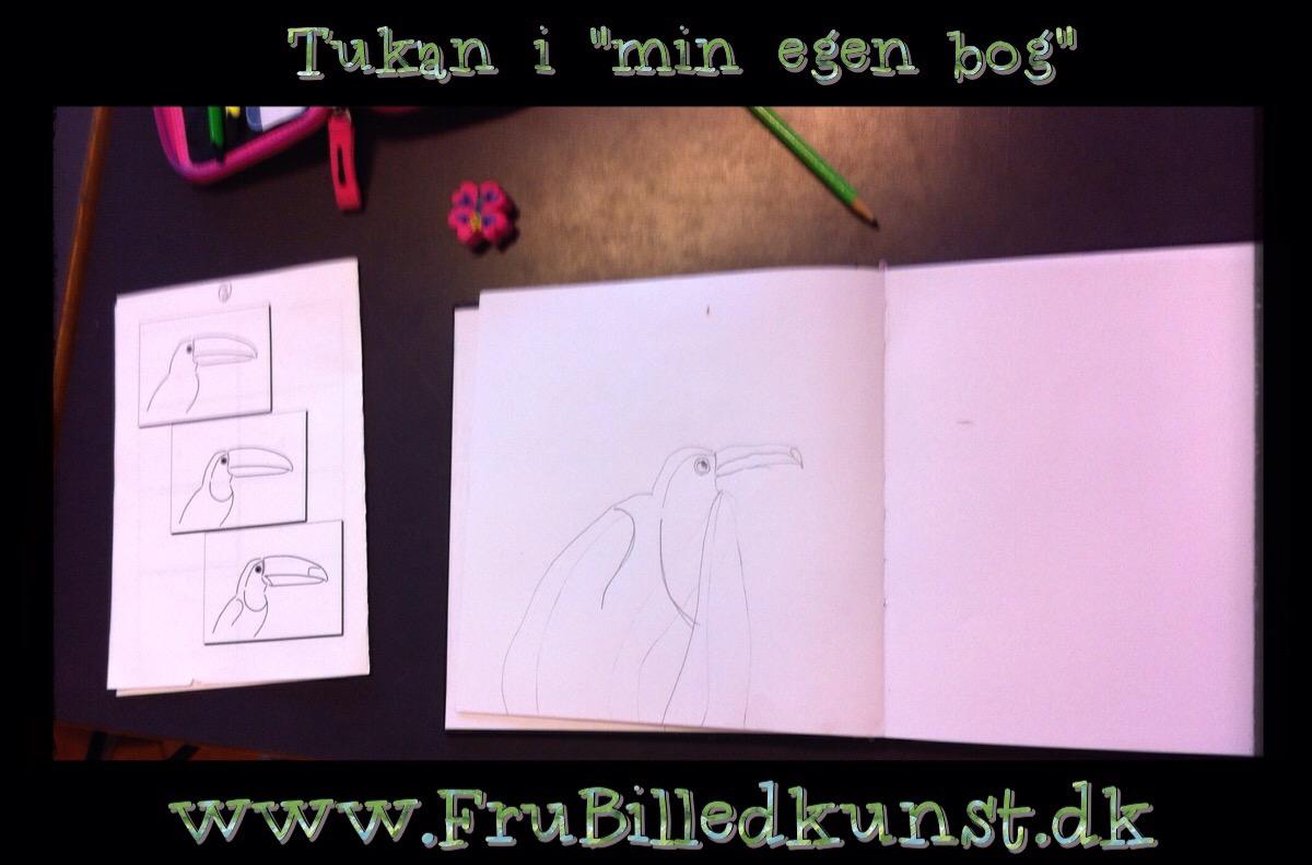 www.FruBilledkunst.dk - Tukaner i Min egen Bog