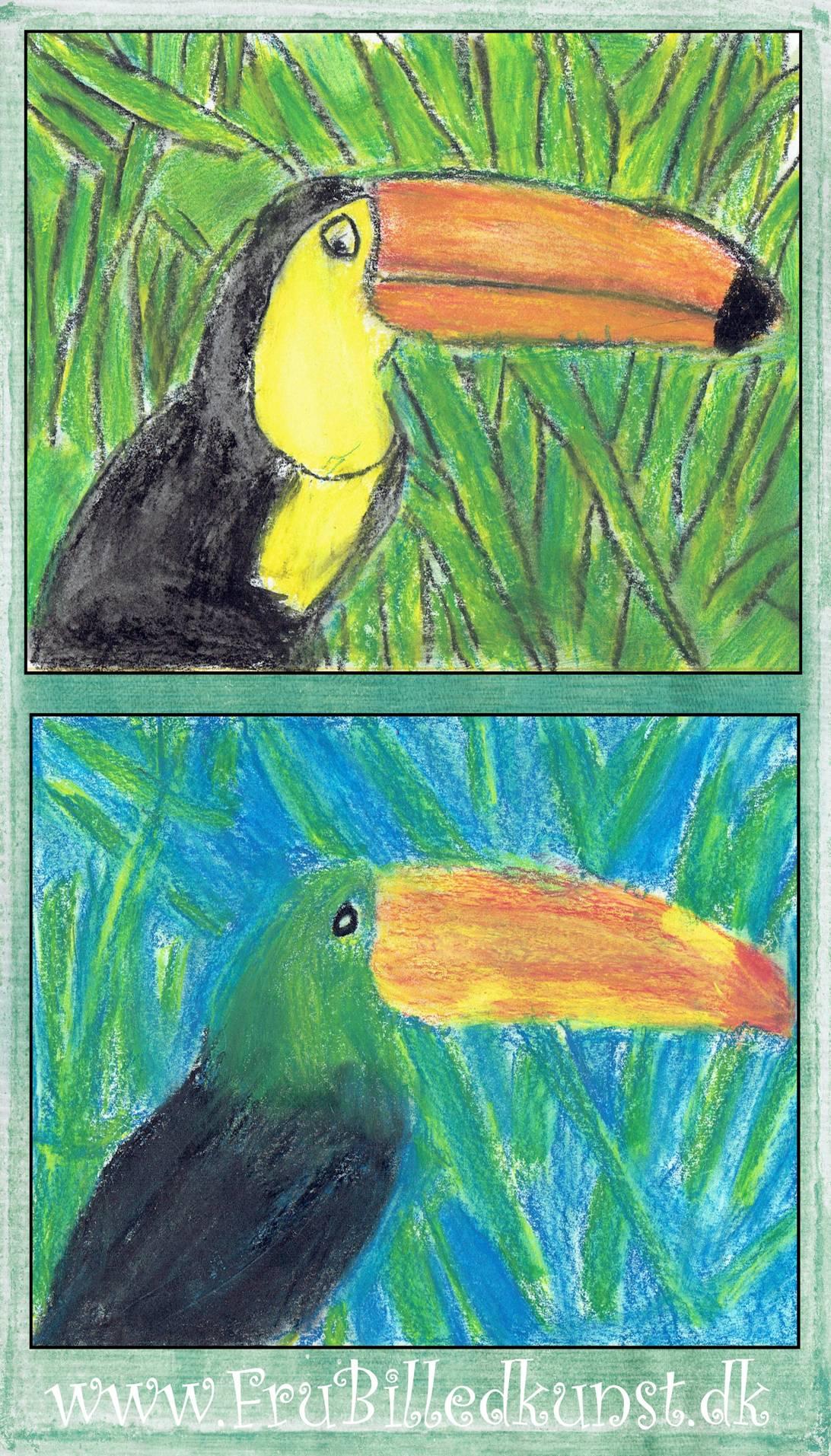 fru billedkunst tukaner